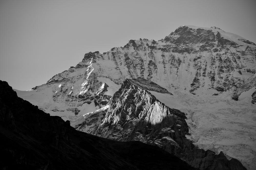 Von den Märkten profitieren bis zum Schluss: Die neue Maximo der Swiss Life