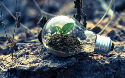 Sind nachhaltige Geldanlagen sinnvoll?